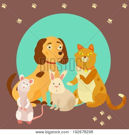 Bright images of domestic animals cat, rat, dog and rabbit. Can be used for pet shops, clinics or pet food advertising.
