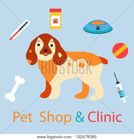 Banner with cute dog with pet medicine and stuff. Can be used for clinics, hospitals or pet shops.