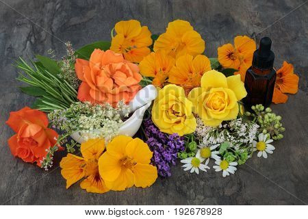 Flower and herb selection used in natural alternative medicine with aromatherapy essential oil bottle and mortar with pestle.