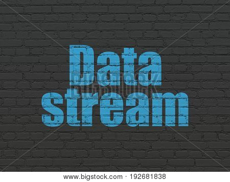 Data concept: Painted blue text Data Stream on Black Brick wall background