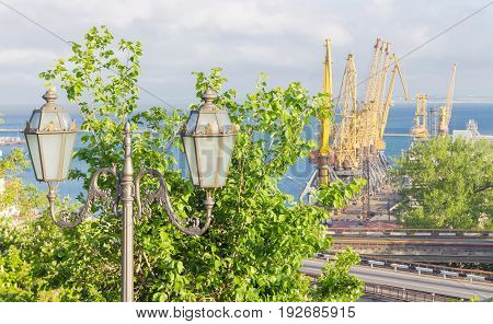 Part of the sea cargo port with berth and different harbor cranes with street light and trees on the foreground