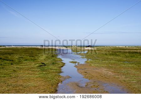 Part of Fanoe beach that has become grassy. With a small watercourse in the middle. Cars and people in the background close to the North Sea.