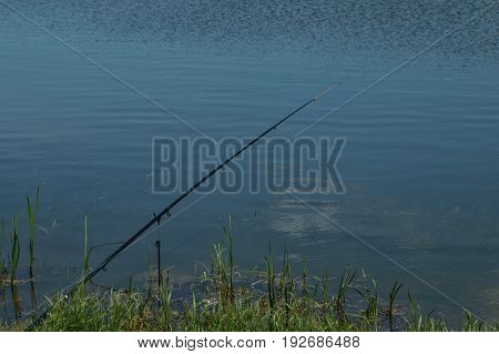 Rods On A Rod Pod With The Swingers Attached Ready To Catch Some Fish.