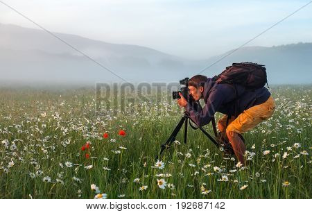 Photographer takes a pictures of a field with chamomiles during sunrise