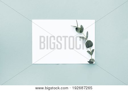 flat lay eucalyptus branches and a blank white sheet on a blue background, top view. mock up