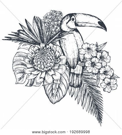 Vector composition of tropical flowers, palm leaves, jungle plants, paradise bouquet with exotic bird. Beautiful black and white floral illustration isolated on white background in sketch style.