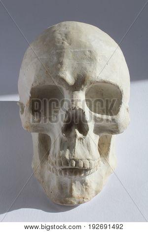 White Plaster Statue Of Human Head Skull On Blue Grey Background