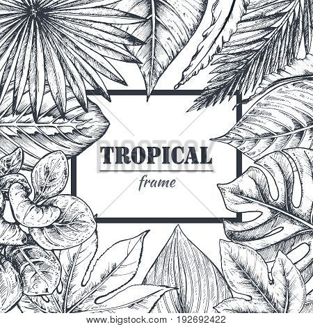 Vector template with frame of hand drawn tropical palm leaves, jungle plants. Beautiful black and white natural background in sketch style.