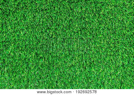 Artificial green grass texture for golf course, soccer field or sports background concept design.