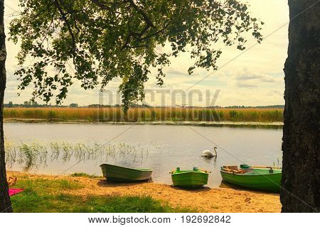 Yellow sandy river beach with vacationers next to wooden boats and a swan