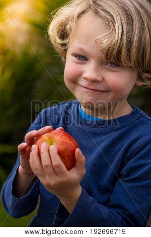 close up of a a cute blonde child wearing a blue shirt holding an apple with a cheeky grin on his face.
