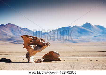 Stone Tree On The Plateau Altiplano, Bolivia