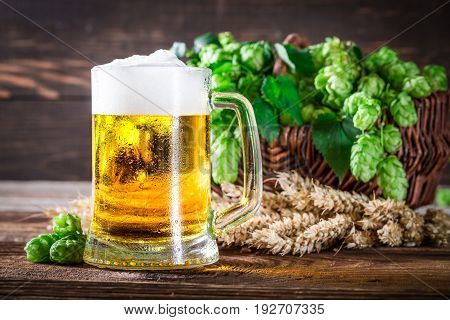 Closeup Of Fresh And Cold Beer In Glass