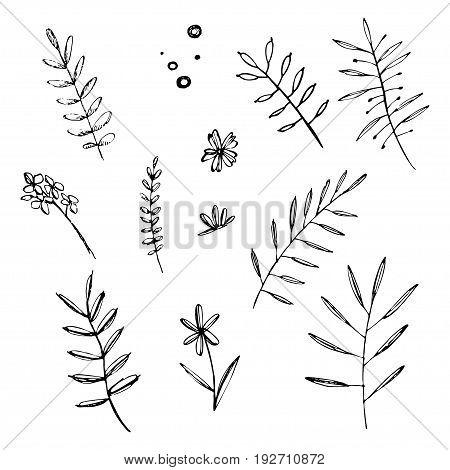 Hand drawn set of doodle flowers. Grafic summer floral elements