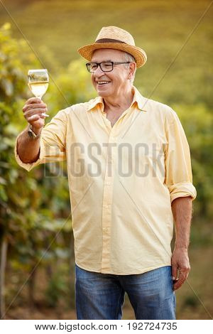 smiling winegrower tasting white wine in vineyard