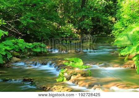 Fast mountain river flowing