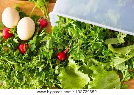 Fresh Herbs And Radishes In A Container And About. Parsley, Lettuce, Radish And Eggs For Salad. Wood