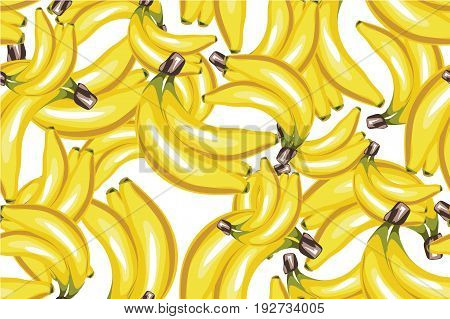 Banana seamless pattern vector. Bunch of Ripe bananas on a white background. For food design, restaurant, wrapping, health care products. Can be used as background, label, decoration