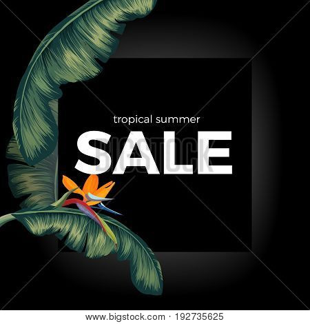 Tropic summer sale offer on black background with green Spathiphyllum leaves and some colorful flower. Big night reduction of prices poster vector illustration