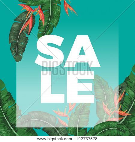 Thick sale sign on promotional banner with exotic greenery. Tropical banana tree and unusual orange bamboo leaves on turquoise background vector illustration.