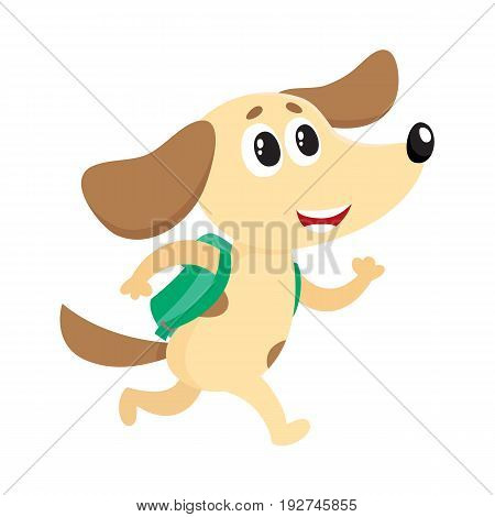 Cute little dog, puppy student character with backpack hurrying to school, cartoon vector illustration isolated on white background. Little dog, puppy student with backpack, back to school concept