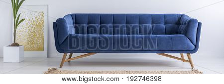 Sofa, Plant And Poster