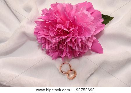 Two Wedding Rings And Peony Flower.