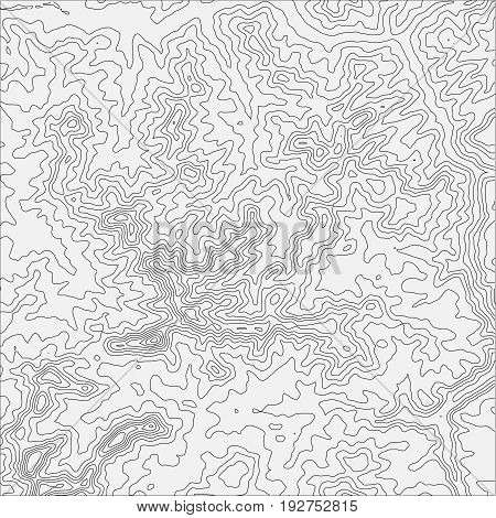 Topographic map background concept with space for your copy. Topo contour map background, vector