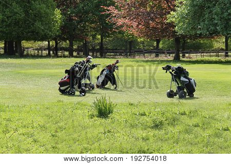 Three Golf Bags and Their Clubs on a Golf Course.