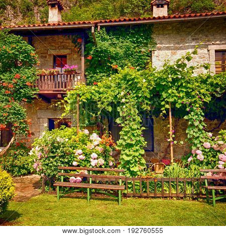 Idyllic stone rural house with blossom flowers in summer pretty cottage garden. Square image