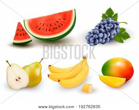 Collection of fruit and berries. Watermelon grape pear banana mango. Vector Set.