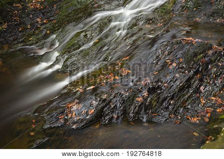 Long exposure of small waterfalls of the mountain creek Tro Maret running over slate rock in the Ardennes, Belgium with some brown old leaves.