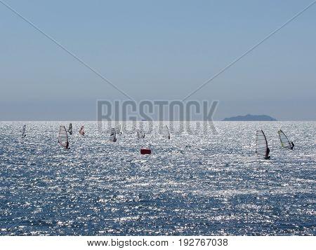 Windsurfing in the sea . Windsurfers silhouettes