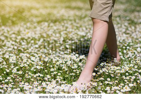 Child's feet in daisy closeup view. Shoeless boy walking on spring meadow. Little boy lying on summer meadow green grass with daisy.