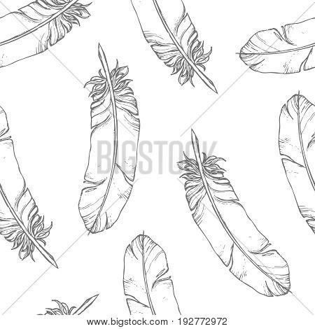 Hand drawn sketchy feathers on a white background, monochrome vector seamless pattern