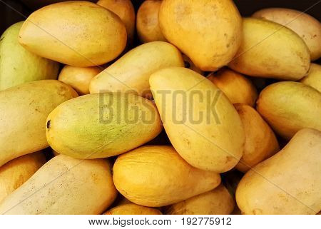 Group of sweet and fresh yellow honey mangos
