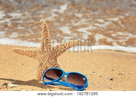 Sunglasses and starfish on sand at sea shore. Vacation concept