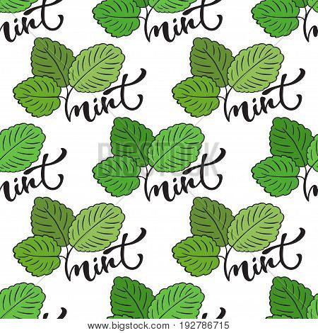 Seamless mint leaf pattern. Vector print for healthy product packaging design or surface texture
