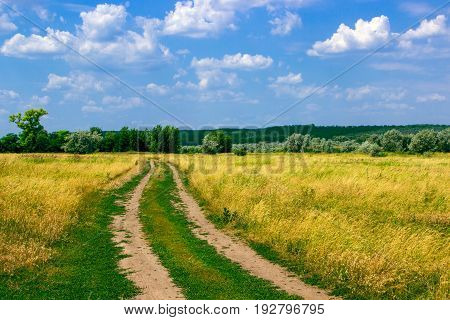 The road goes to dry grass in the rural mestnosti