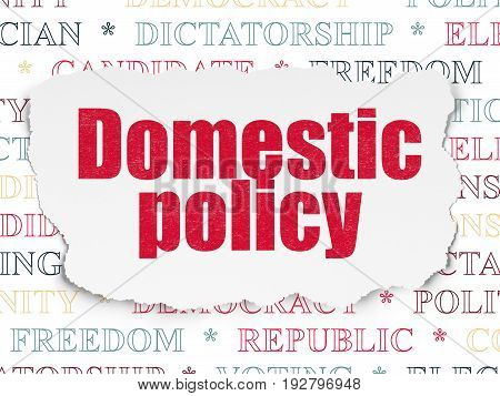 Political concept: Painted red text Domestic Policy on Torn Paper background with  Tag Cloud