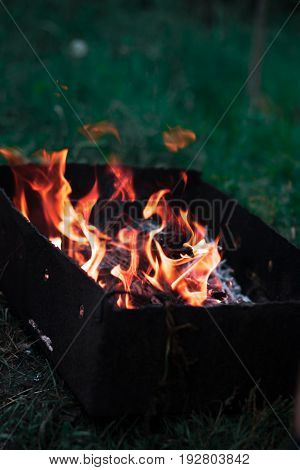 A bonfire in the nature in a forest with a blurred background