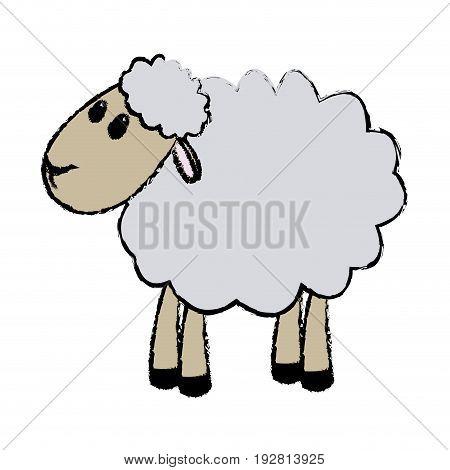 curly lamb christmas manger religion vector illustration