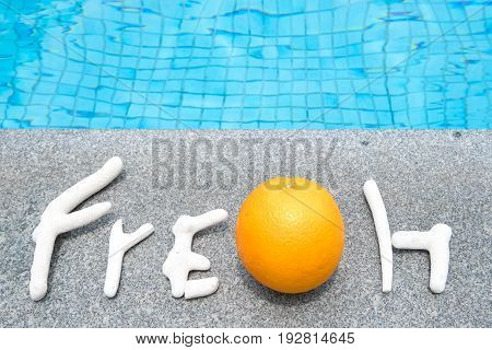 Concept of holiday tropical on summer fresh message from coral and orange on border of a swimming pool.