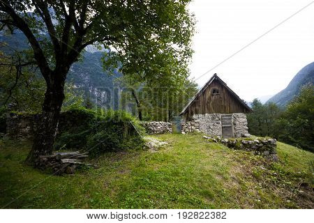 Old mountain hut with a old tree in front in the middle remote mountain valley, Alps, Slovenia