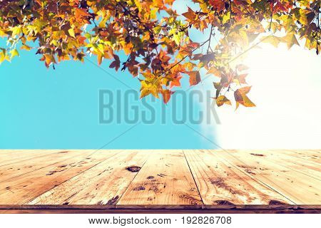 Top of wood table with beautiful autumn maple tree on sky background - Empty ready for your product display or montage. Concept of background in fall season.