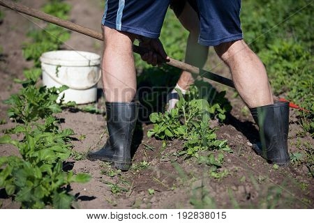 Man working garden with a hoe. Hobbies and ecological living background