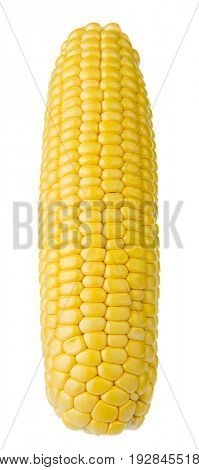 Corn on the cob isolated on white background.