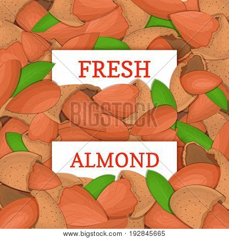 Two white rectangle label on almond nut fruit background. Vector card illustration. Nutty pattern walnut nut whole and slice leaves for design of food packaging breakfast detox diet, vegan, cosmetics oil
