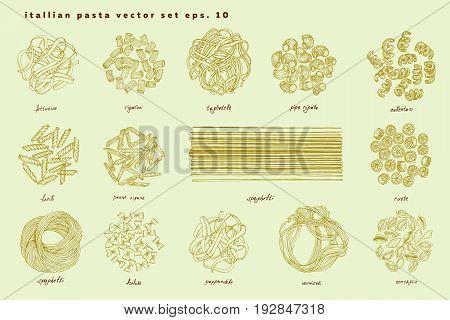 Big set of Italian pasta. Fettucine conchiglie fusilli cellentani vermicelli tagliatelle pipe rigate ruote macaroni penne farfalle spaghetti
