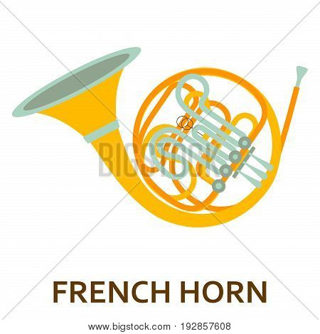 Music instrument icon. French horn. Vector flat illustration